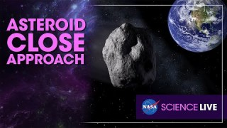 NASA Science Live: Asteroid Close Approach
