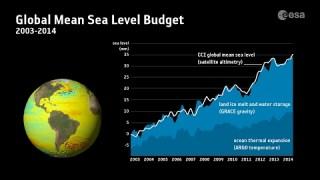 Contributors to sea-level rise