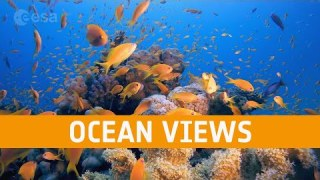 Meet the Experts: Ocean views from space