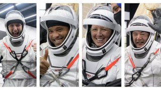 NASA's SpaceX Crew-1 Astronauts Answer Questions After Return to Earth