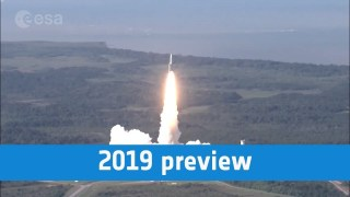 2019 preview