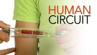 Human Circuit - Sick Science! #154