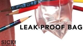 Leak-Proof Bag - Sick Science! - #120