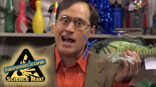 Science Max|AIRPLANES|Science Experiments