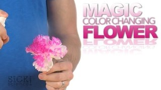 Magic Color Changing Flower – Sick Science! #177