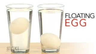 Floating Egg – Sick Science! #167