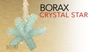 Borax Crystal Star – Sick Science! #066