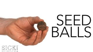 Seed Balls – Sick Science! #147