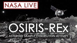 Watch NASA's OSIRIS-REx Spacecraft Attempt to Capture a Sample of Asteroid Bennu