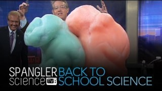 Back to School Science Elephant's Toothpaste – Cool Science Experiment