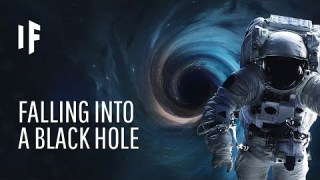 What If You Fell Into a Black Hole?