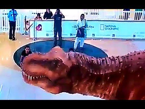 7D Show in Dubai Mall