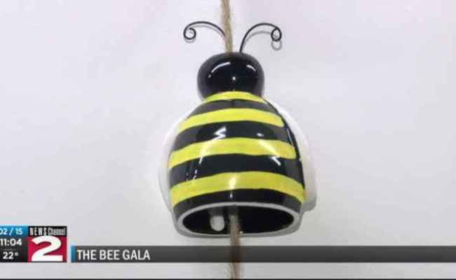 The Bee Gala Honoring Bianca Devins Held One News Page Video