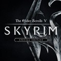 Skyrim Facts video games