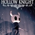 hollow knight facts video game