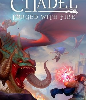 Citadel Forged with Fire facts