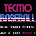 Tecmo Baseball facts