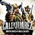 Call of Juarez Bound in Blood facts