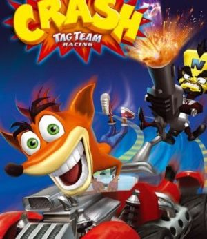 Crash Tag Team Racing facts