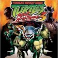 Teenage Mutant Ninja Turtles 3 Mutant Nightmare facts