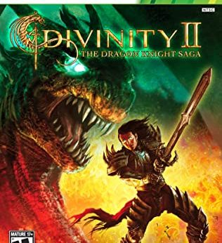 Divinity II The Dragon Knight Saga statistics