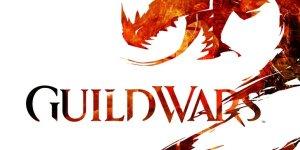 Guild Wars 2 banner
