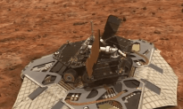 The Very Curious Life of a Mars Rover