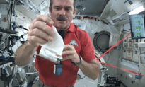 GET WISE: How to Clean Up A Mess in Space