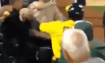 Rowdy Fan Gets Tazed At Baseball Game