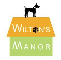 Wilton's Manor Best New Doggie DayCare and Grooming with Over Night Boarding