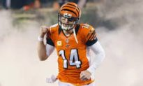 Dolphins at Bengals betting lines and analysis: Bounce-back time for Cincy?