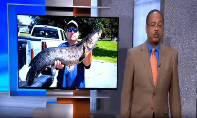Maryland Man Catches Record Size Snakehead Fish