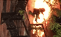 New York Fire Fighter's Dramatic Rescue