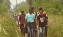 Migrants Cross Serbia-Hungary Border On Foot