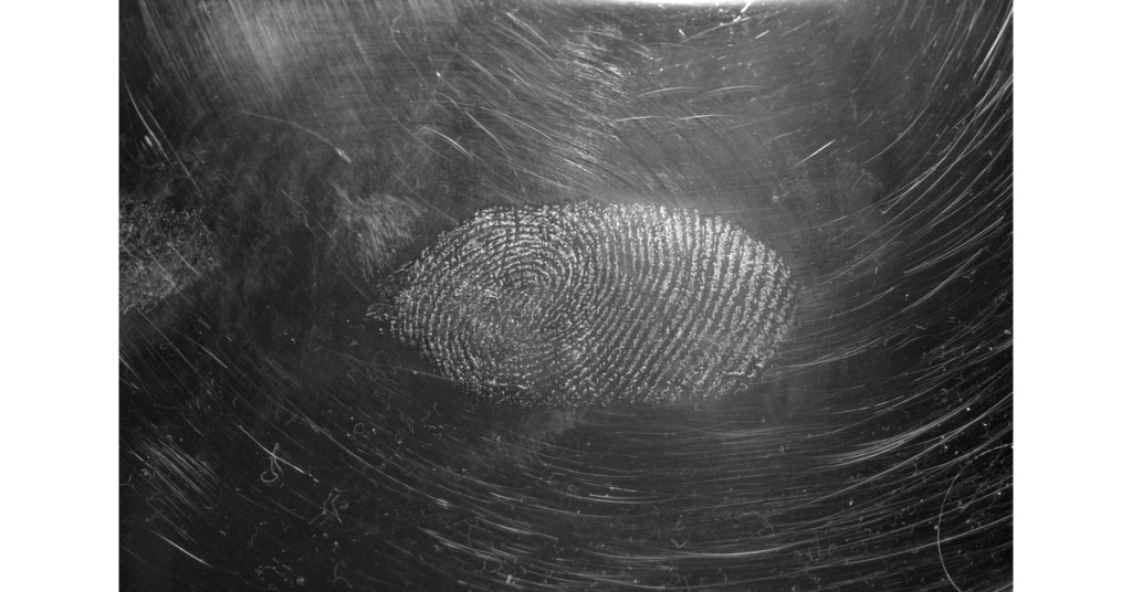 forensics Photo by Immo Wegmann