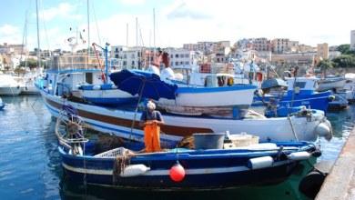 Photo of Campania – Nasce il marchio del Pescato Campano