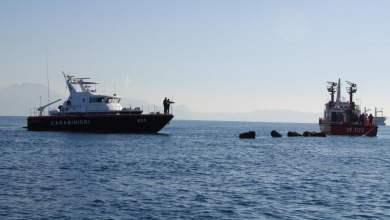 Photo of Napoli – Sequestrati 41 tonnellate di cozze molo San Vincenzo del porto