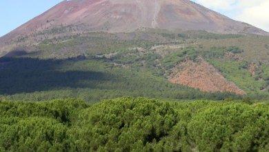 Photo of Campania – Vesuvio in quiescenza, le rassicurazioni dell'INGV