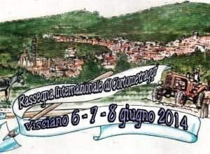 """Photo of Visciano – Presentata la V° edizione del """"Premio Carpine d'Argento"""""""