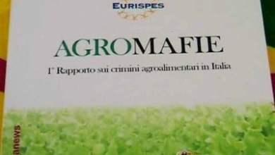 Photo of Coldiretti – Agromafie 2016, presentato il rapporto