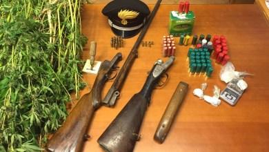 Photo of Pimonte – Armi, munizioni, cannabis e marijuana in casa: arrestato 47enne