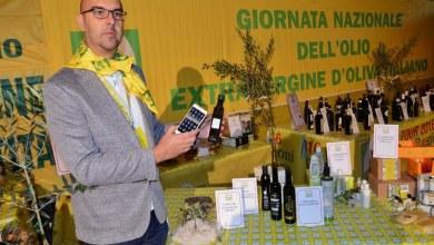 Photo of Campania – Il clima impazzito colpisce le olive: previsto -49% di produzione