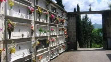 Photo of Campania – Mercato dei fiori ancora a rischio