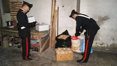 Photo of Sant'Antimo – carenze igieniche: sequestrato forno abusivo