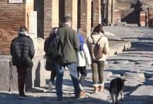 Photo of Pompei – Riapertura Scavi: numerose prenotazioni dei visitatori