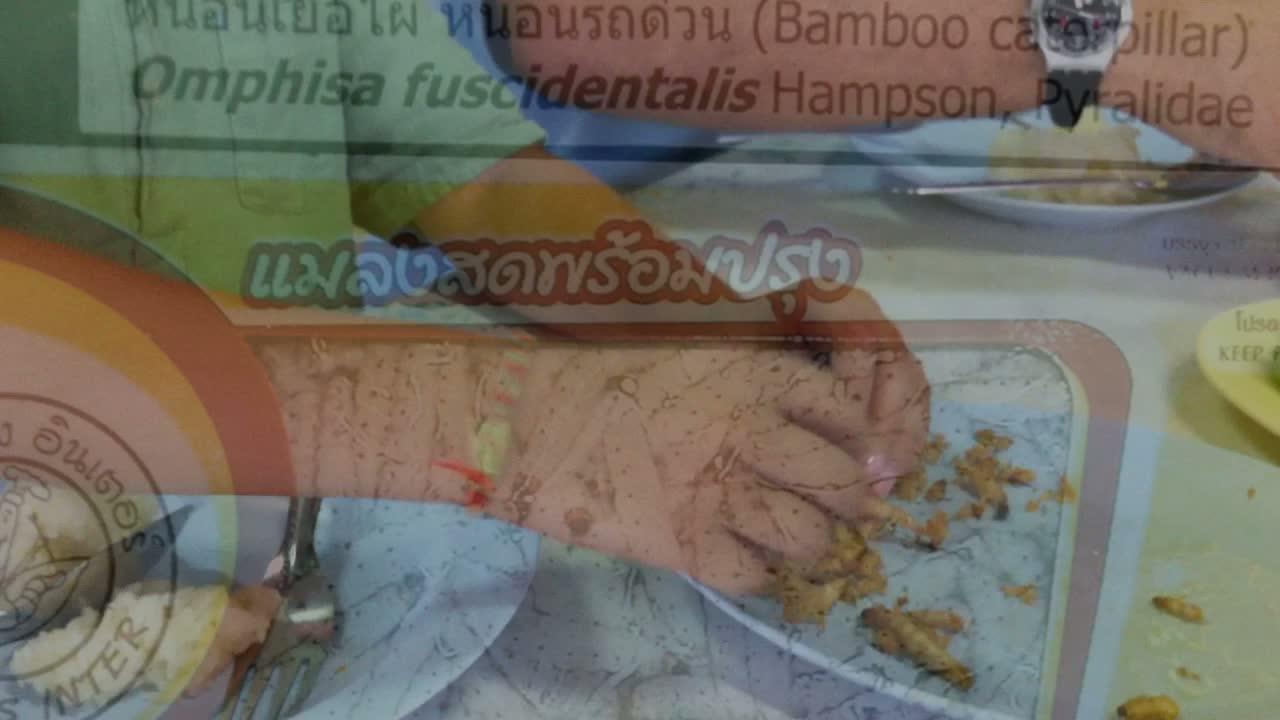 Borneo 2011_849