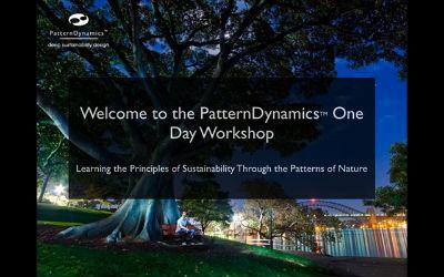 PatternDynamics Workshop introduction KeyNote Melbourne 0912