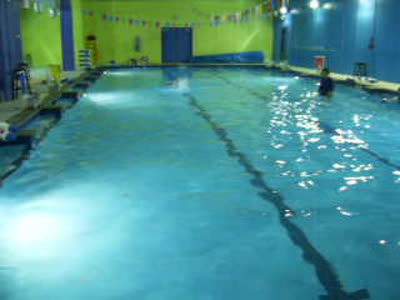 Howard At Swim Class 23 December 2014 Nearly Three Months 001