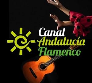 flamencocool_canal-andalucia-flamenco-2020