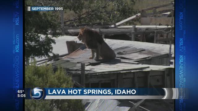Unlike Ohio Utah law strictly prohibits dangerous animals